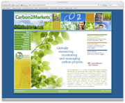 Digital Active - Carbon 2 Markets